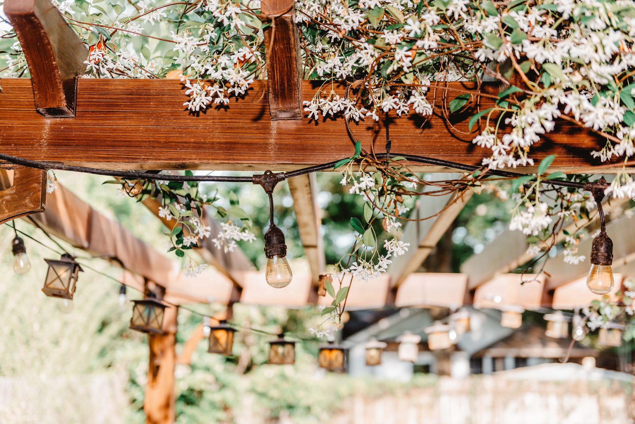 Closeup of patio outdoor spring white flower garden in backyard porch of home, lamps light bulbs, zen with pergola canopy wooden gazebo, plants