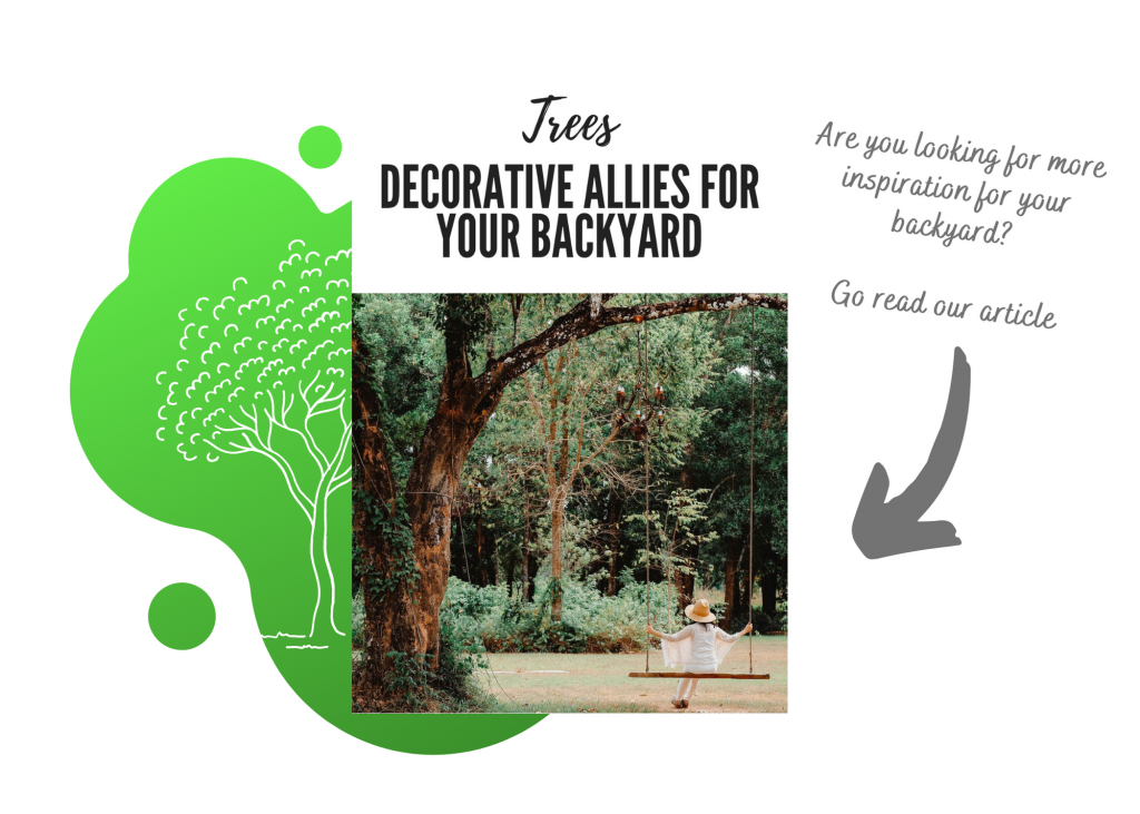 You can see a link to an article about trees in your backyard.